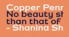 Copper Penny DTP Normal