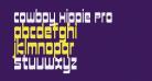 Cowboy Hippie Pro