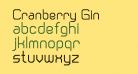 Cranberry Gin