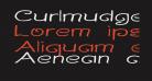 Curlmudgeon Wideside
