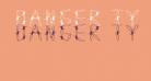 Danger Type