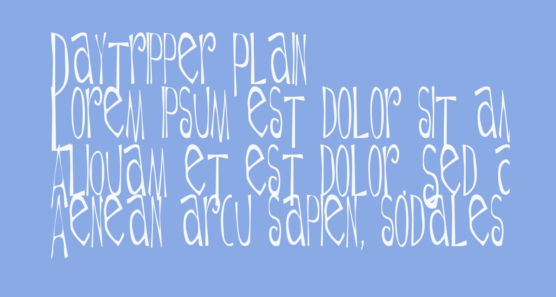 Daytripper Plain