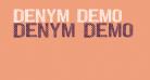 DENYM demo