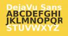 DejaVu Sans Bold