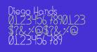 Diego Hands