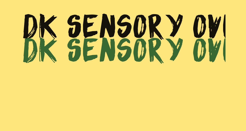 DK Sensory Overload