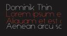 Dominik Thin