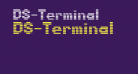 DS-Terminal