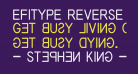 EFITYPE REVERSE Regular