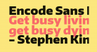 Encode Sans Black
