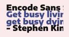 Encode Sans Semi Expanded Black