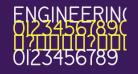 Engineering Plot