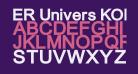 ER Univers KOI-8 Bold