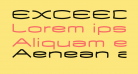 EXCEED Medium