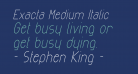 Exacta Medium Italic