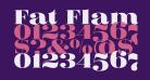 Fat Flamingo5