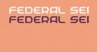 Federal Service Light