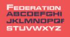Federation Starfleet 1