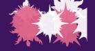 Flaming Stars  Splatters