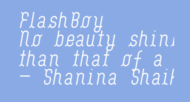 FlashBoy