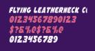 Flying Leatherneck Condensed