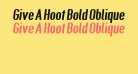 Give A Hoot Bold Oblique