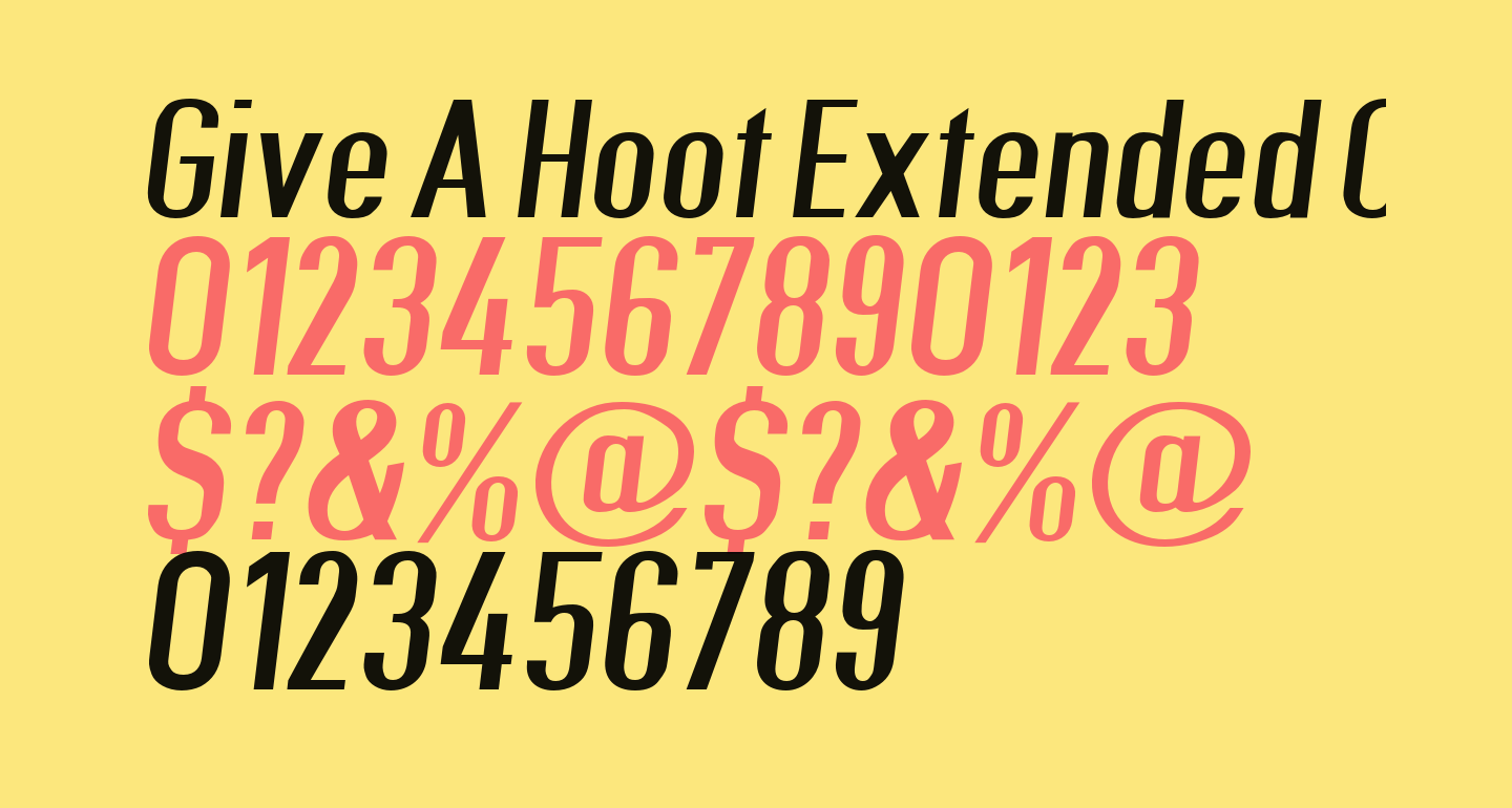 Give A Hoot Extended Oblique