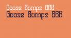 Goose Bumps BRK