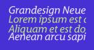 Grandesign Neue Roman Italic