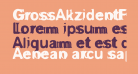 GrossAkzidentFucked