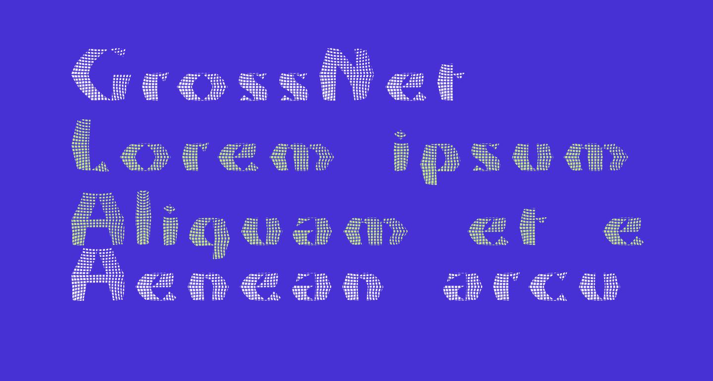 GrossNet