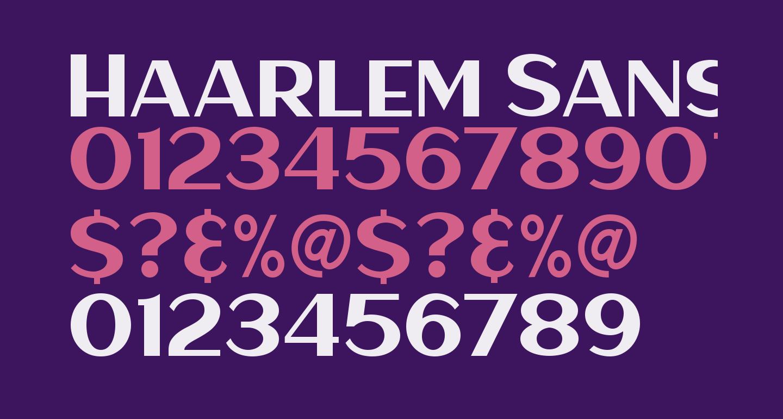 Haarlem Sans [Demo]