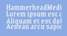HammerheadMedium