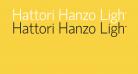 Hattori Hanzo Light