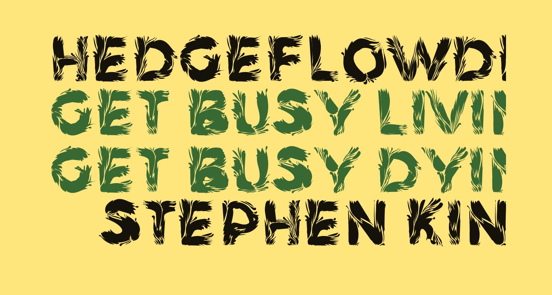 HedgeFlowDemo Bold
