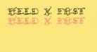 Held x Fast Regular