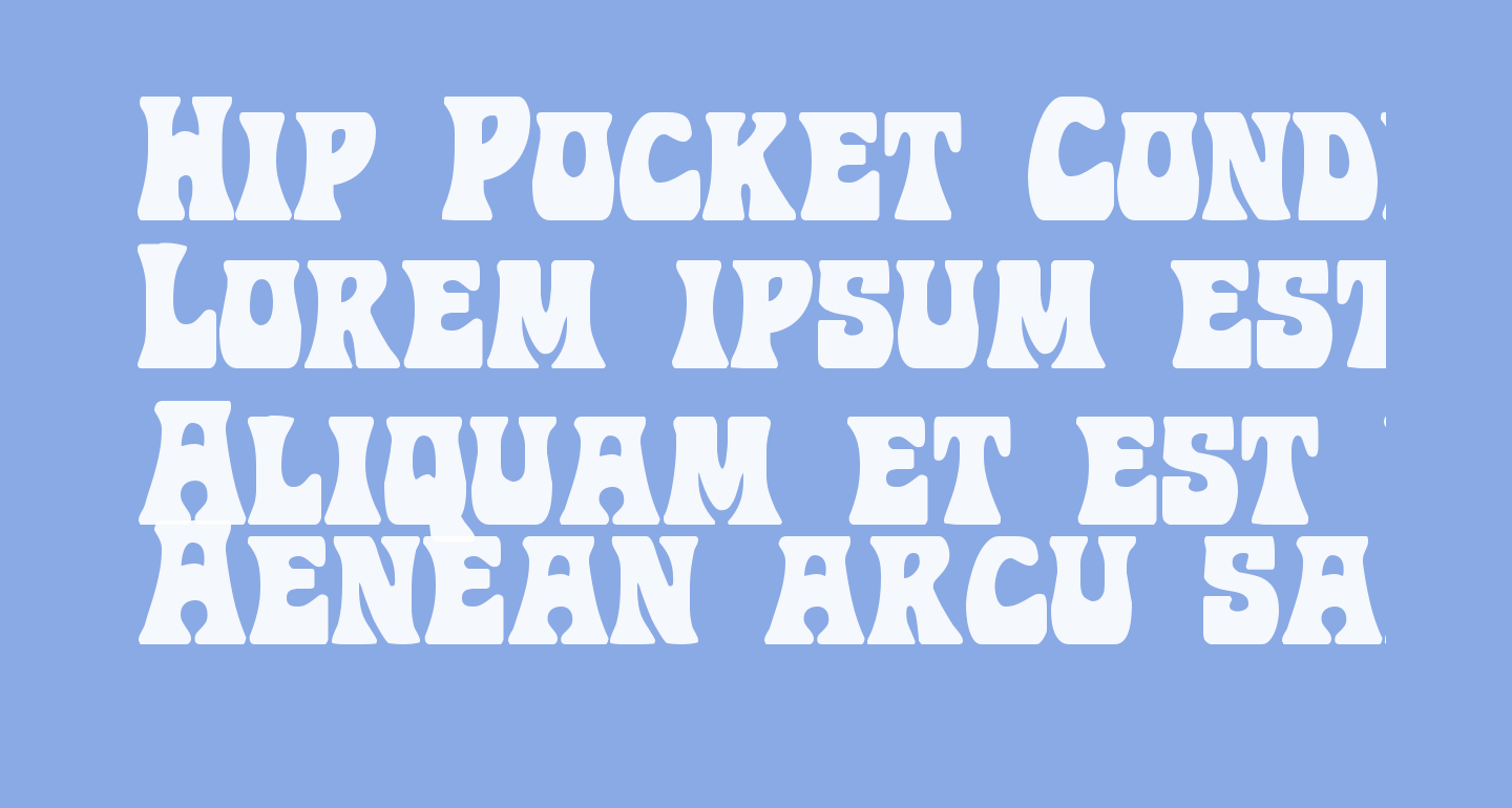 Hip Pocket Condensed