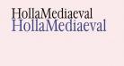 HollaMediaeval