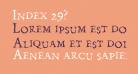 Index 29?
