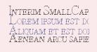 Interim SmallCaps