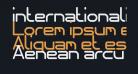 internationalist