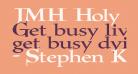 JMH Holy Bible