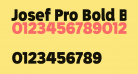 Josef Pro Bold Black