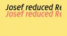 Josef reduced Regular Italic