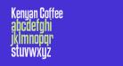 Kenyan Coffee