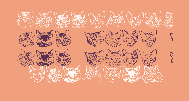 KittyPrint AOE