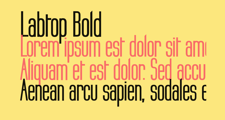 Labtop Bold
