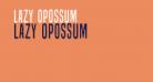 Lazy Opossum