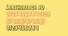 Leatherface 3D