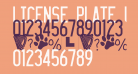 LICENSE PLATE USA